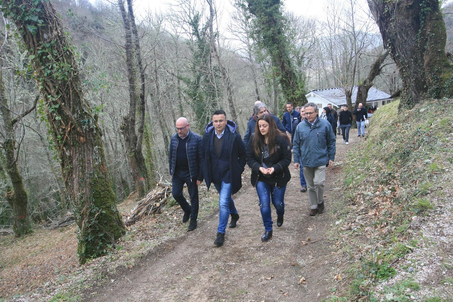 Medio Rural recuperará unhas 30.000 hectáreas de soutos tradicionais para potenciar a produción de castaña